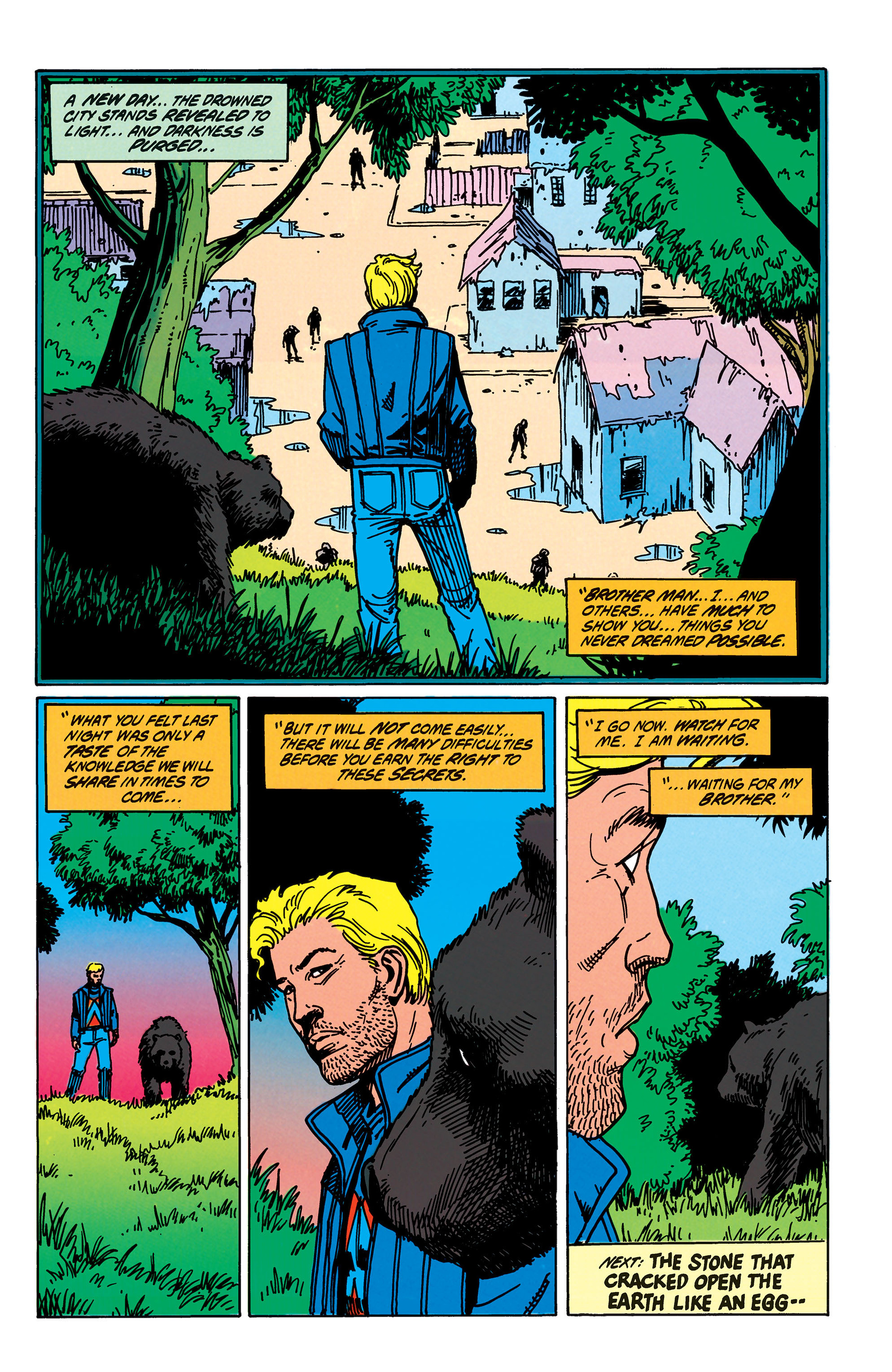 Read online Animal Man (1988) comic -  Issue #40 - 25