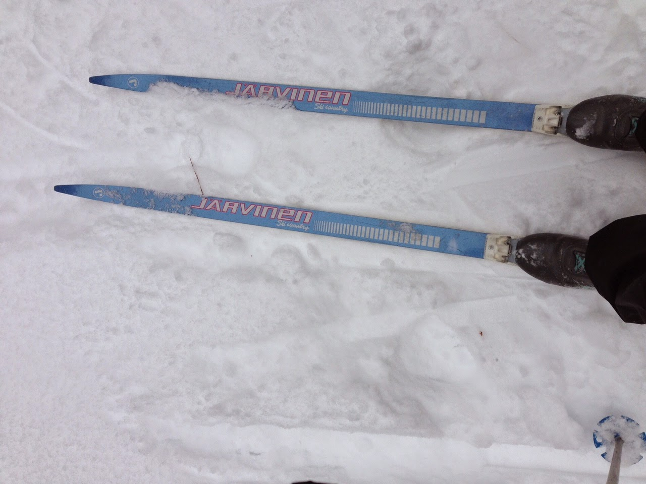 image of cross country skis