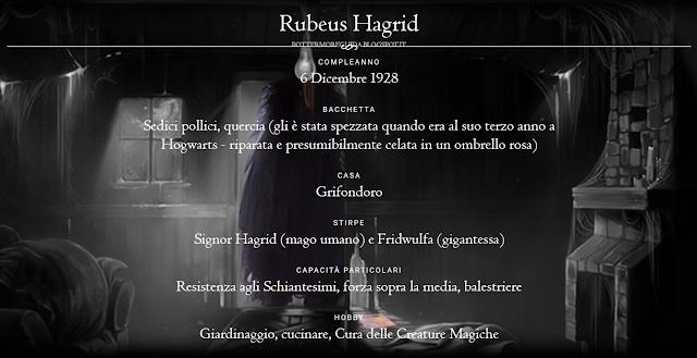Scheda di Rubeus Hagrid