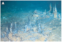 http://sciencythoughts.blogspot.co.uk/2012/03/two-new-hydrothermal-vent-communities.html