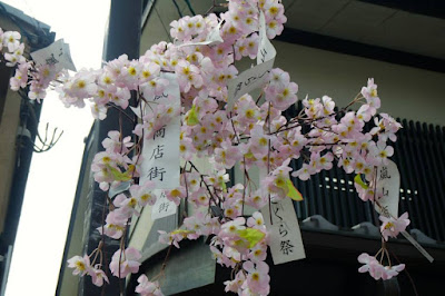 Paper wishes tied to sakura flower