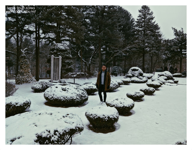 Loving the cold snow in Nami Island