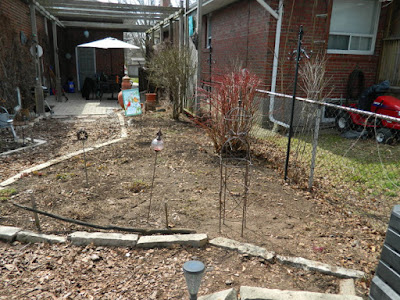 Toronto Etobicoke spring garden cleanup after by Paul Jung Gardening Services