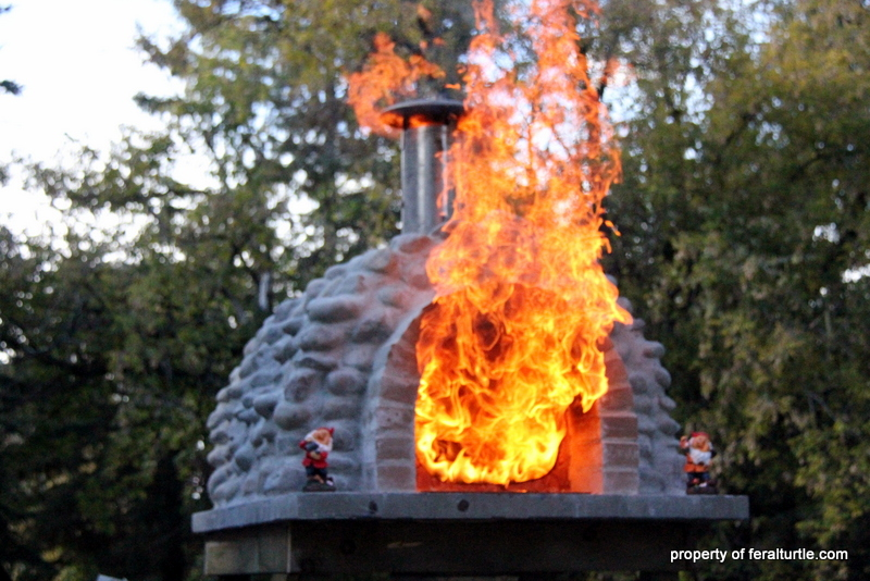 The Feral Turtle Rocket Stove Pizza Oven Part 4