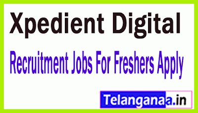 Xpedient Digital Recruitment Jobs For Freshers Apply