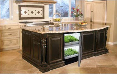 Tobi Brockway Interiors Indoor Vegetable Garden For Your Kitchen