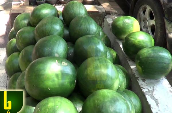 الفرق بين البطيخ المسرطن والسليم
