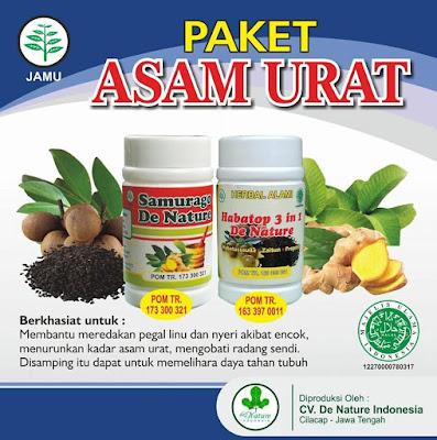 Image OBAT ASAM URAT