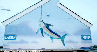 David Dunleavy SeaLife Wall Murals in North Wildwood