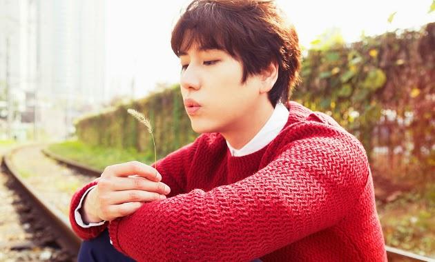 Kyuhyun Super Junior Rilis Teaser Untuk Album Solo
