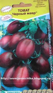 томаты черный мавр
