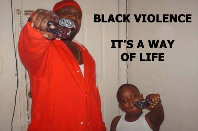Joliet Illinois - 20-year-old Negro Welfare Breeder Dinesty