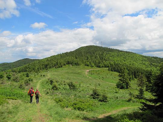 Kucałowa Przełęcz z Halą Kucałową. Po drugiej stronie przełęczy wznosi się Okrąglica.