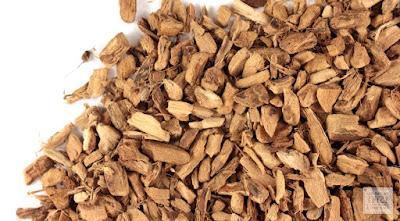 10+ Amazing Health Benefits Of Calamus Root