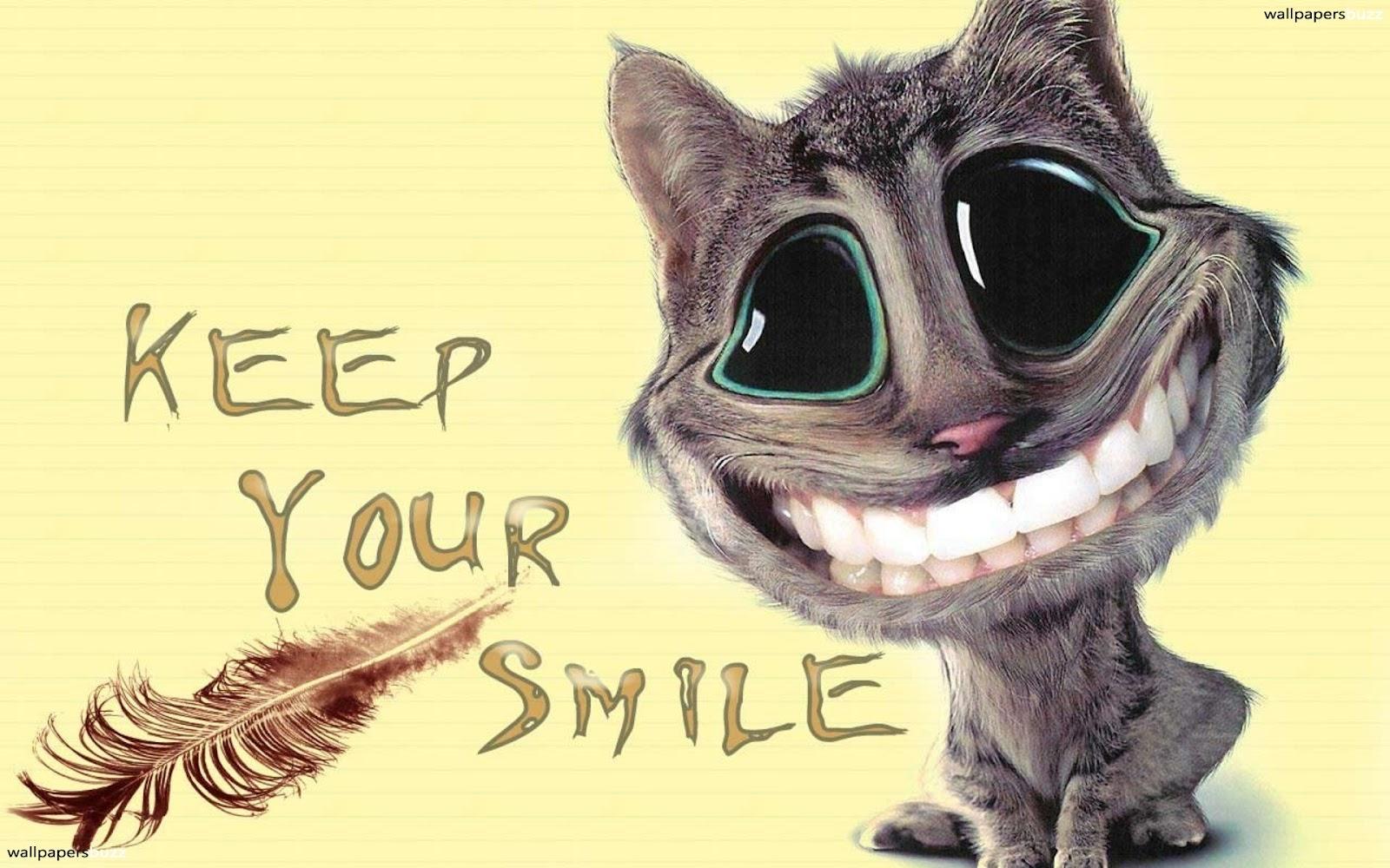 HD Animals: cat smiling cartoon