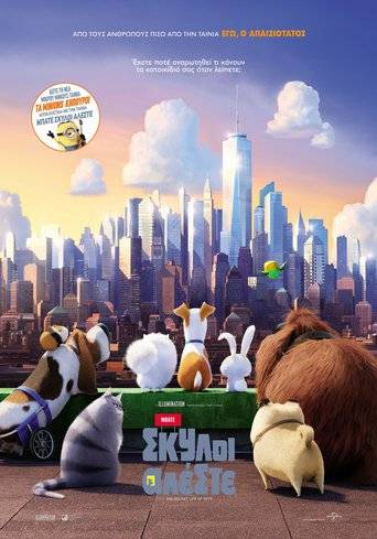 The Secret Life of Pets (2016) ταινιες online seires oipeirates greek subs