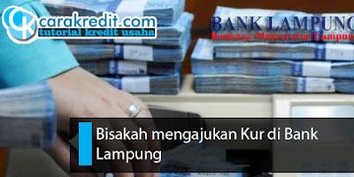 Bisakah mengajukan Kur di Bank Lampung