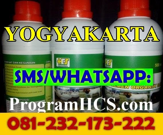Jual SOC HCS Yogyakarta