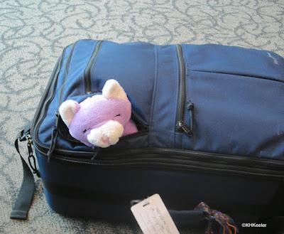 suitcase with Felix Luna