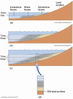 How to Identify Transgression and Regression in a Sedimentary Outcrop?
