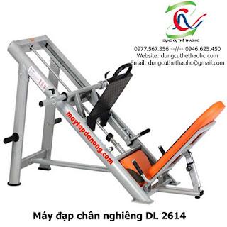 Máy đạp chân nghiêng DL 2614
