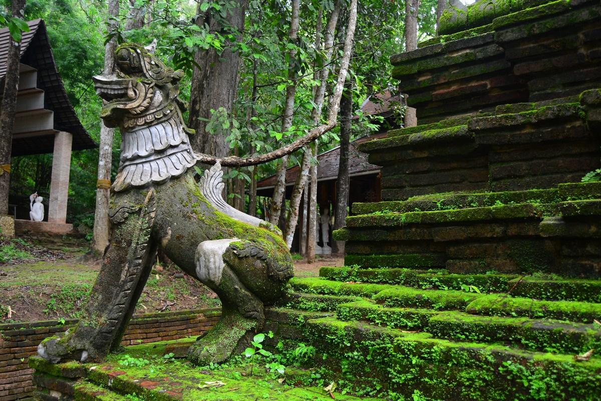 Atmosphère humide et moussue dans le petit temple bouddhique de Wat Pha Lat.