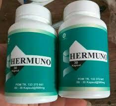 Grosir Hermuno Original murah