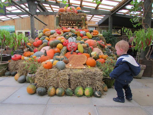 Days out - Heligan Harvest