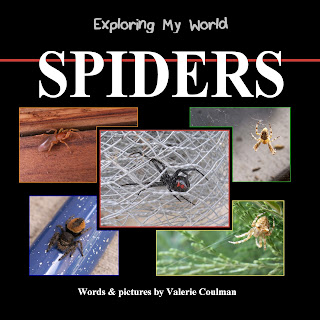 Exploring My World: Spiders by Valerie Coulman