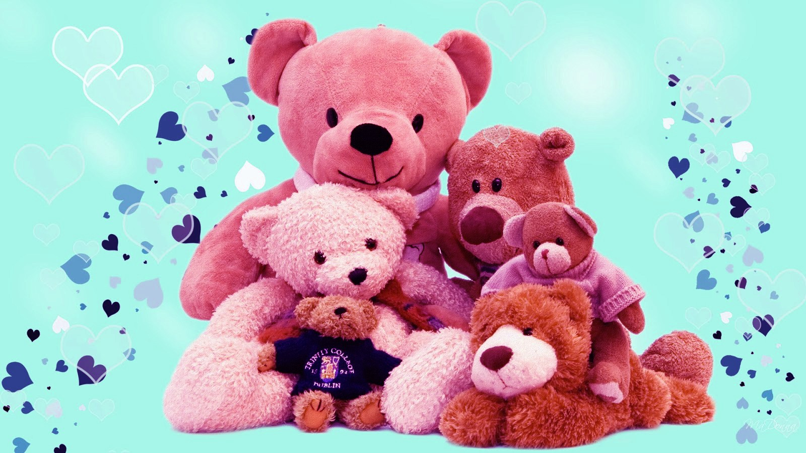 Good Wallpaper Mobile Teddy Bear - Happy-Teddy-Day-Images-Photos-SMS-Quotes5  Pictures_866065.jpg