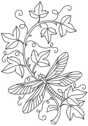 Tranh tô màu con chuồn chuồn đậu trên dây leo