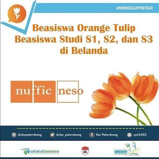 Beasiswa Study S1 S2 S3 di Orange Tulip Belanda Untuk Umum by NESO