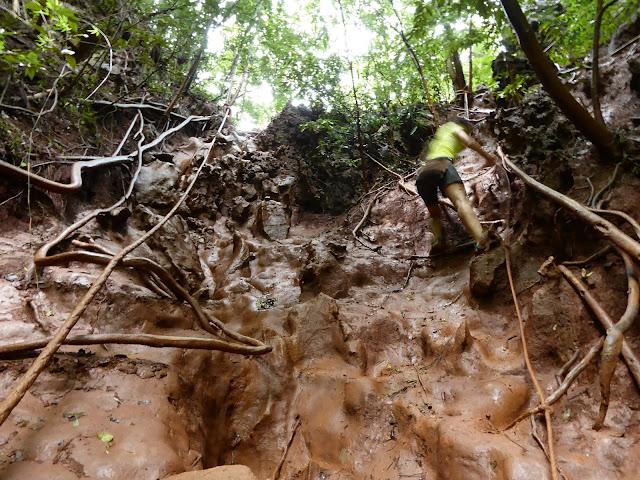 Camino de bajada a la Hidden Lagoon, en épocas de lluvia es muy resbaladizo, sin esas cuerdas la visita sería bastante peligrosa
