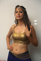 Malvika Raaj in Golden Choli and Skirt at Jayadev Pre Release Function 2017 ~  Exclusive 047.JPG