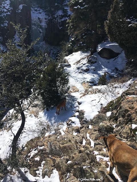 Hiking to Bouillon Falls, Utah, Waterfalls in Utah, Best waterfalls in utah