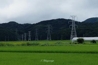 日本の風景 猪苗代湖 福島県 田園風景 鉄塔