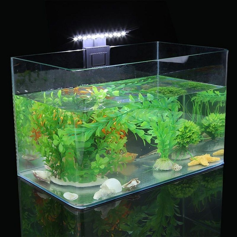Image Introducing Do Betta Fish like Fake Plants in Their Tank