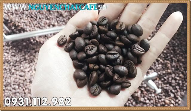 Nhận rang gia công cà phê ở tại Buôn Ma thuột - Đăk Lăk - Tây Nguyên