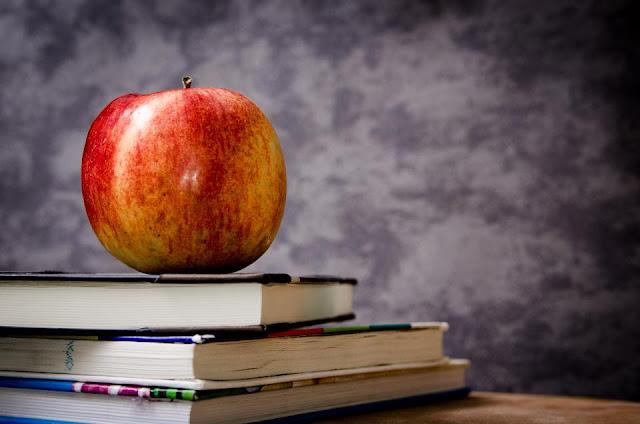 SonicerJ: ¿Está el sistema educativo roto?