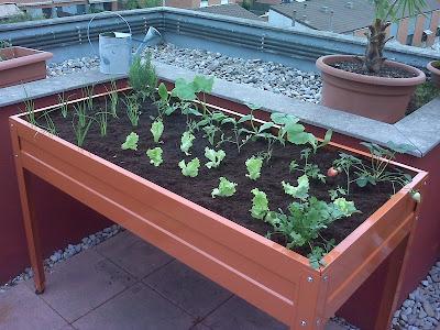 El blog de la elena un blog dulce divertido y for Como hacer una mesa de cultivo casera