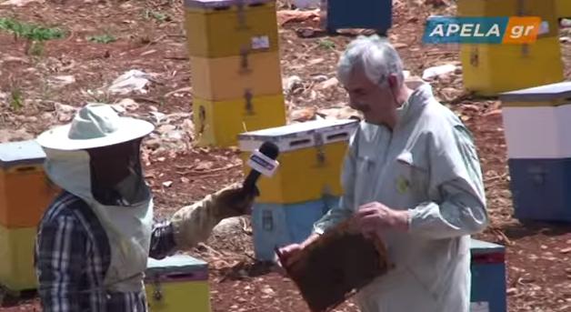 Μια ημέρα μελισσοκόμος video