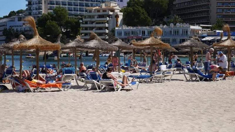 Hoteles en Palmanova Mallorca todo incluido