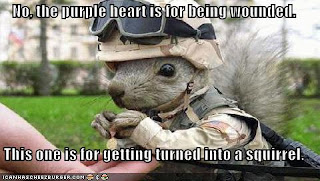 The teach Zone: Funny military pictures with captions