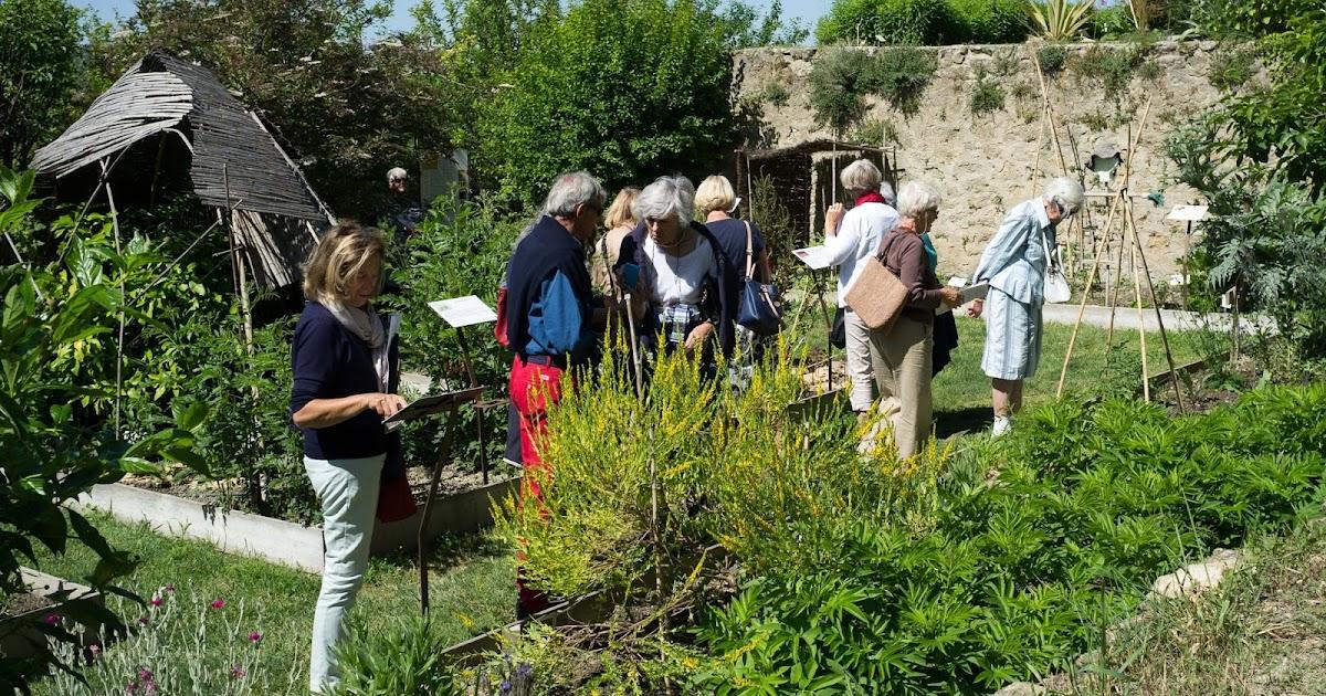 Gardening airy fairies jardin conservatoire des plantes for Jardin des voix 2016