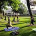 Cours de yoga en plein air été 2017