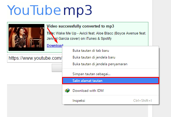 cara download youtube dengan idm tidak muncul