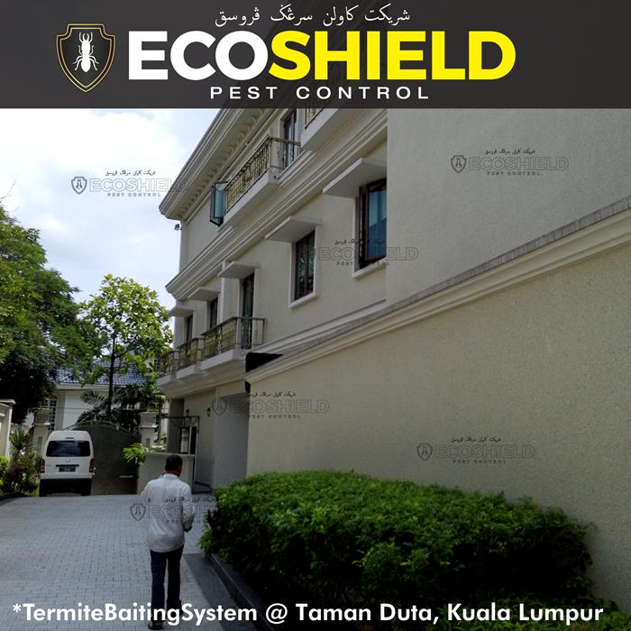 Termite Control : Pest Control Selangor Malaysia