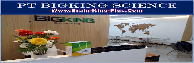 http://www.brain-king-plus.com/#