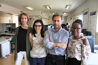 Os investigadores Sandra Soares, Susana Brás, Armando Pinho e Jacqueline Ferreira