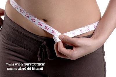 कमर की चौड़ाई मोटापे की निशानी होती है